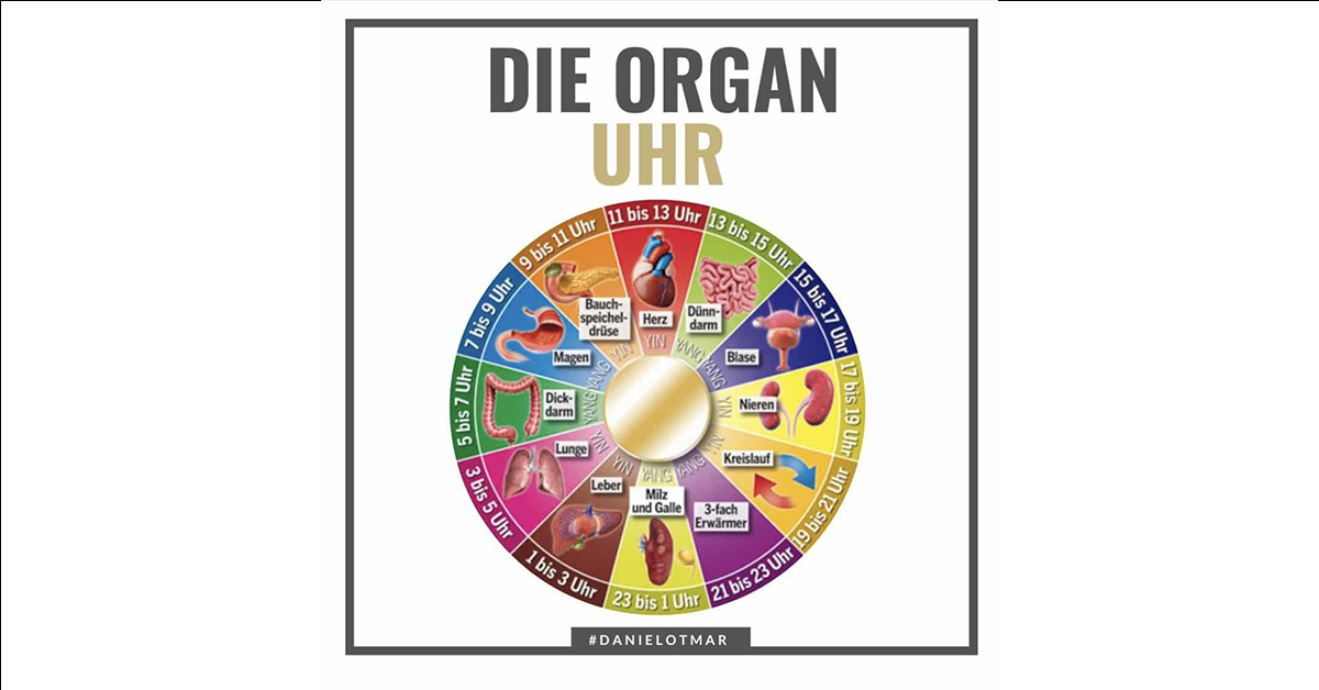 organuhr